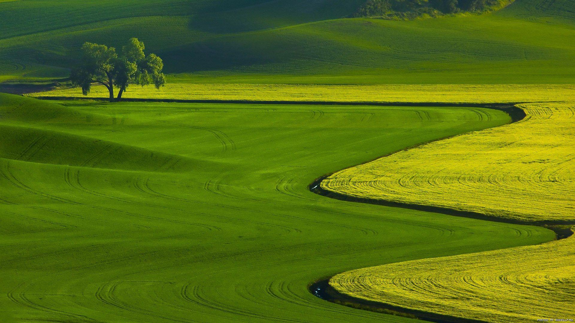 Desktop Wallpaper High Resolution 33 Beautiful Landscape Photography Landscape Photography Green Nature Wallpaper