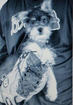 Bella loves some baseball