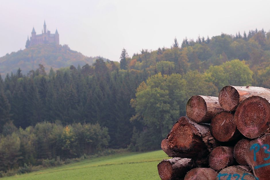 Day Trip To Burg Hohenzollern Prettiest Castle In Germany Germany Castles Hohenzollern Castle Prettiest Castles