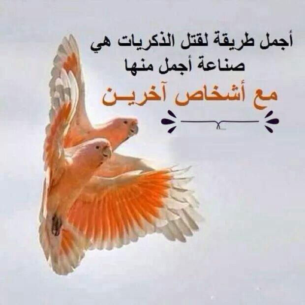 فن قتل الذكريات Cool Words Words Quotes Arabic Quotes