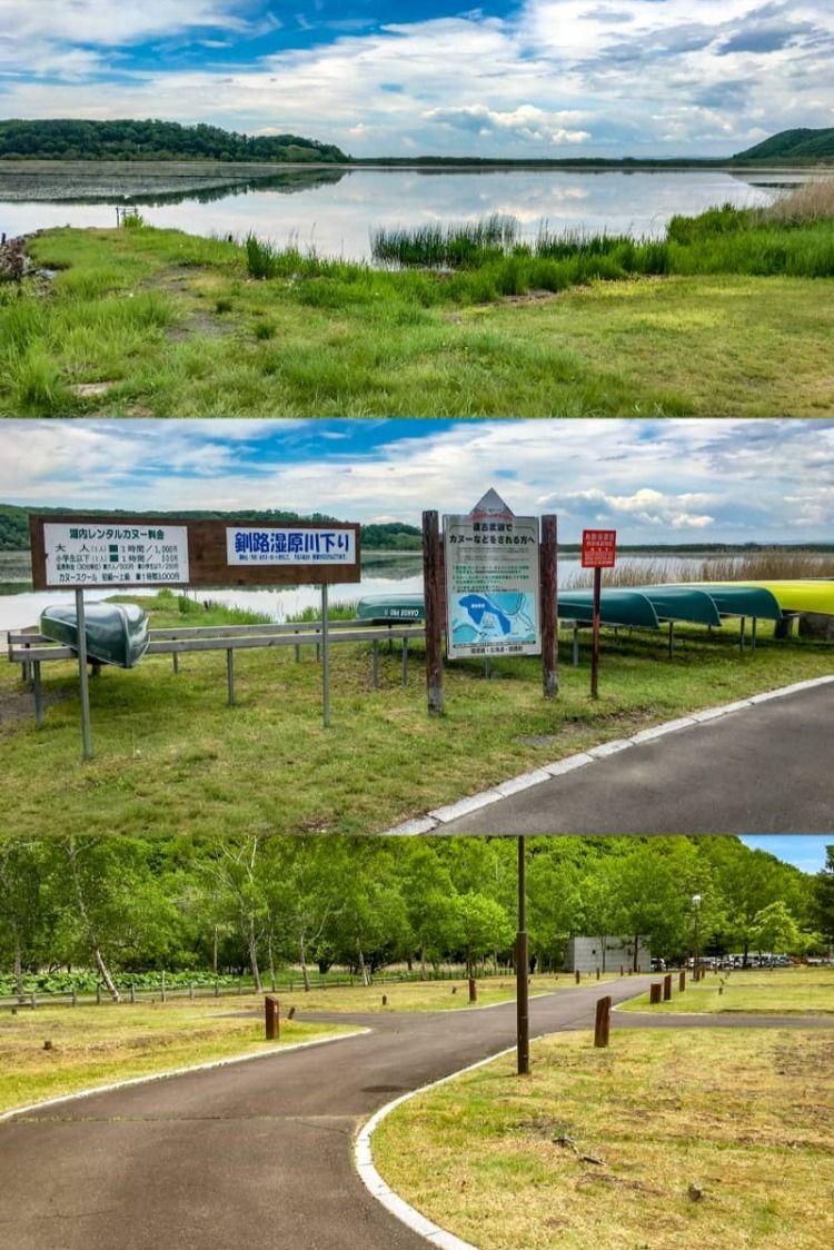 ファミリーにもおすすめの逹古武オートキャンプ場で愛犬と一緒にキャンプしてみた オートキャンプ場 キャンプ キャンプ場