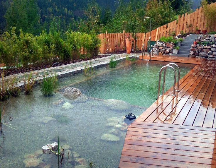 schwimmteich natural pools pinterest teich garten und schwimmen. Black Bedroom Furniture Sets. Home Design Ideas