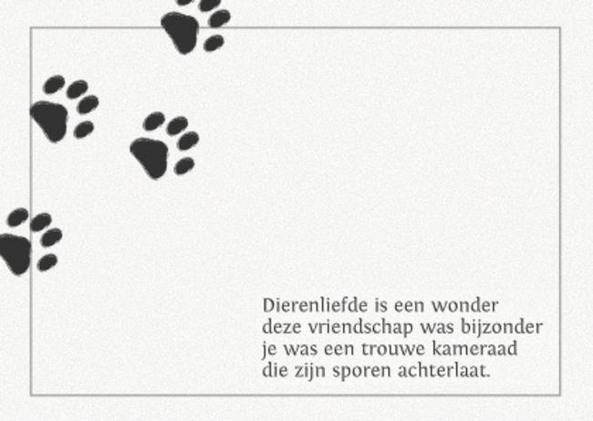 dierenliefde spreuken Dierenliefde.. | Spreuken hond | Pinterest   Pets, Animal house  dierenliefde spreuken