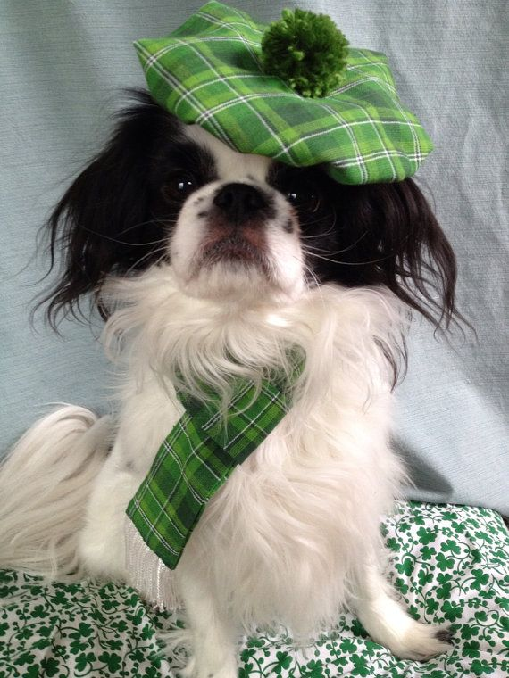 St Patrick S Day Dog Hat And Scarf Set Irish Green Plaid For Pets