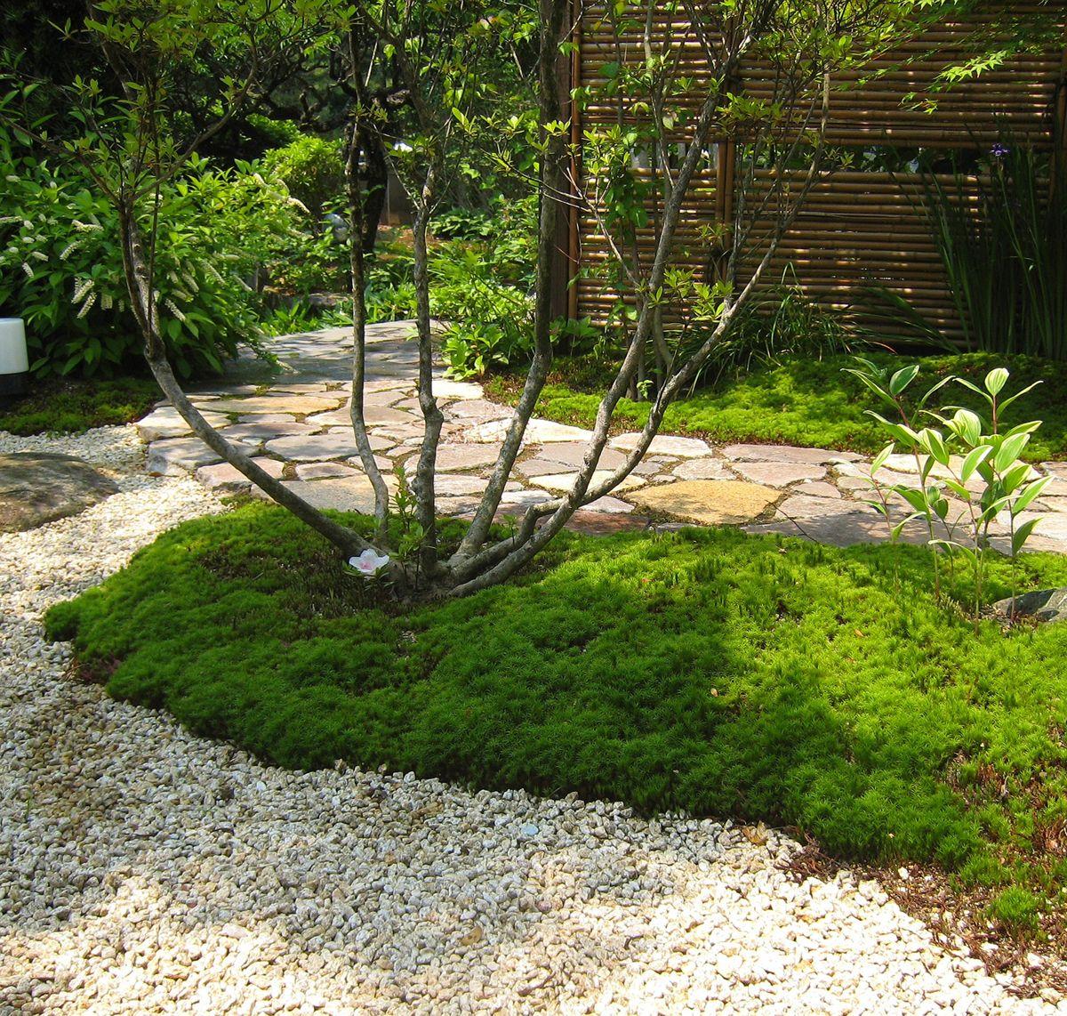 プライベートな庭園空間 誰もが憧れる理想の庭をカタチにさせていただきました 門をくぐり アプローチを進むと徐々に住まいが見えてくる 家から庭を眺めたとき 緑に囲まれ周囲の目を気にせずくつろぎの時間が過ごせる 庭 日本庭園 美しい庭