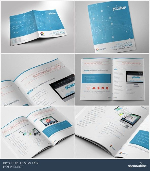 Prize Guaranteed* - Brochure design for Hot Project - Online - software brochure