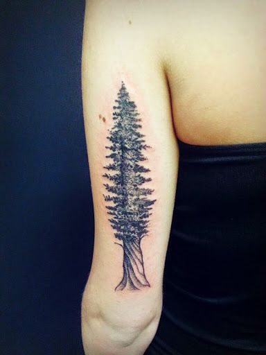 Epingle Par Tattoo Egrafla Sur Tatouage Arbre Tatouage Modele