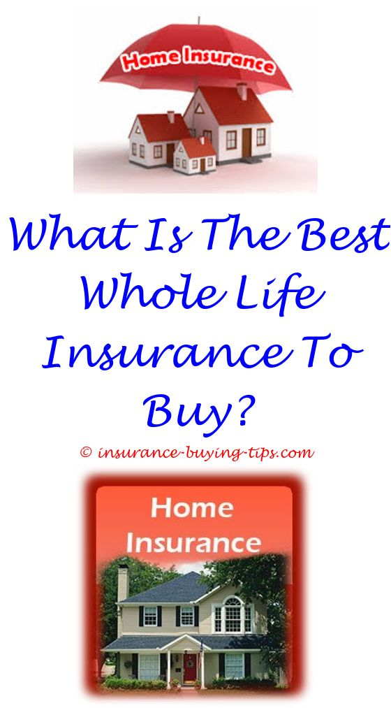 Safe Auto Insurance Quote Quote Car Insurance Florida  Buy Health Insurance 10000 Dollars .