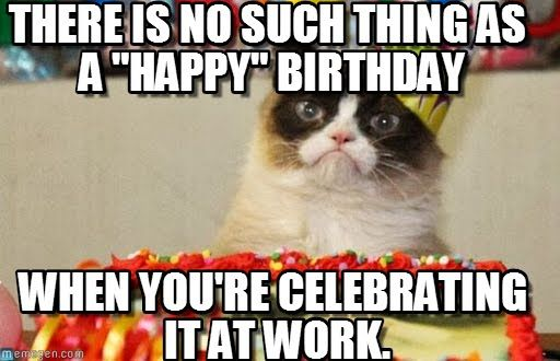 Funny Cat Meme About Work : Funny happy birthday meme google search i wish you