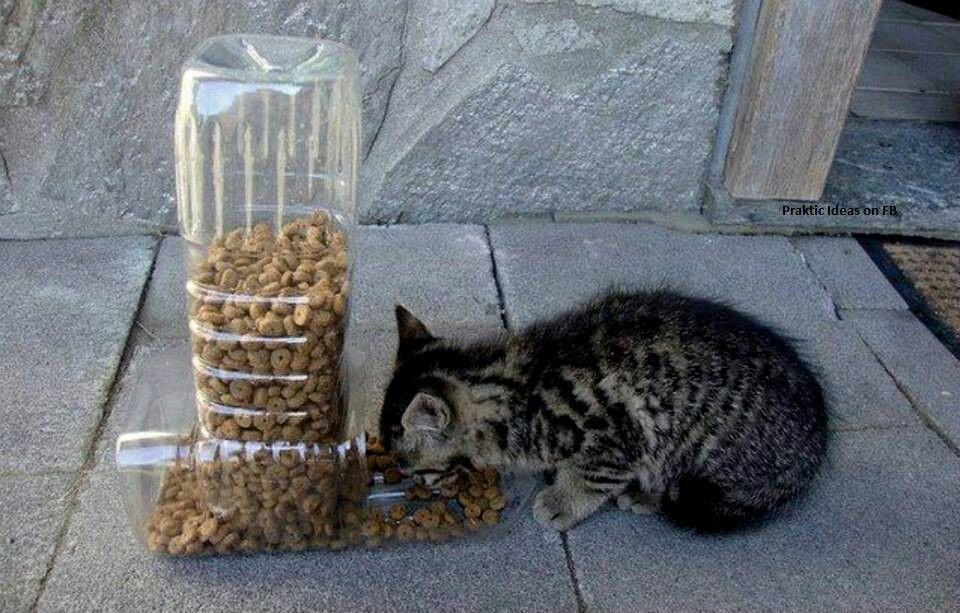 Diy Self Feeder Cat Feeder Reuse Plastic Bottles Pet