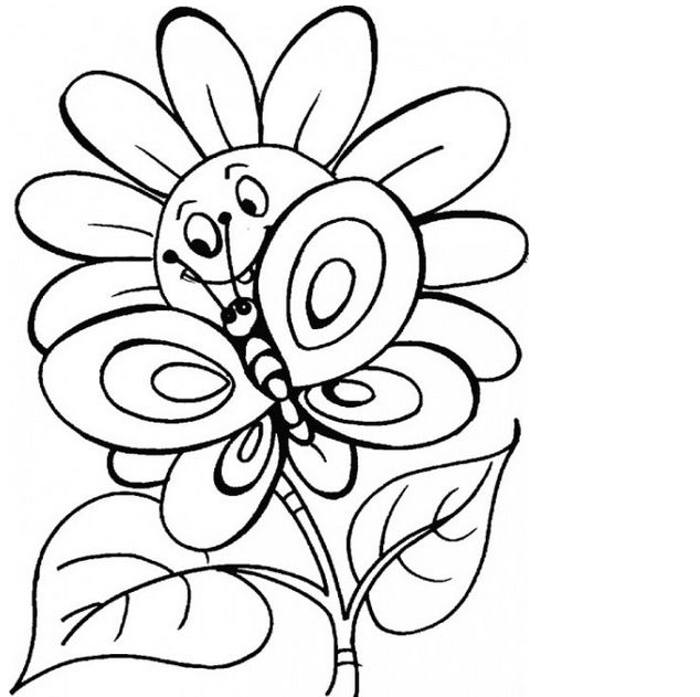Butterfly and Flower Coloring Pictures  Coloring Pages  Drawings