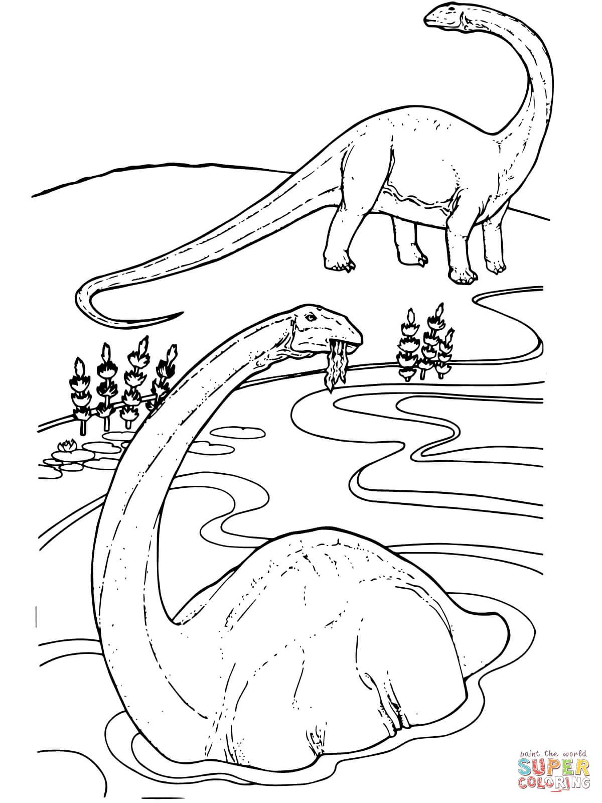Apatosaurus Coloring Page From Apatosaurus Category Select From