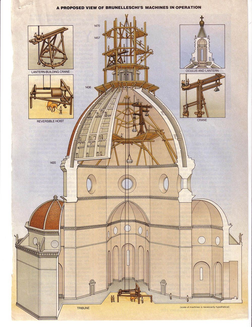 Section of Brunelleschi's dome of the cathedral, Florence (1420-36 ...