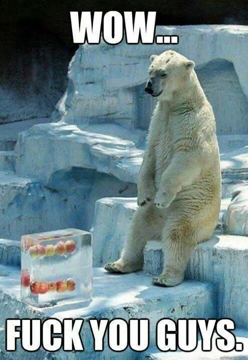 I feel for this poor bear...