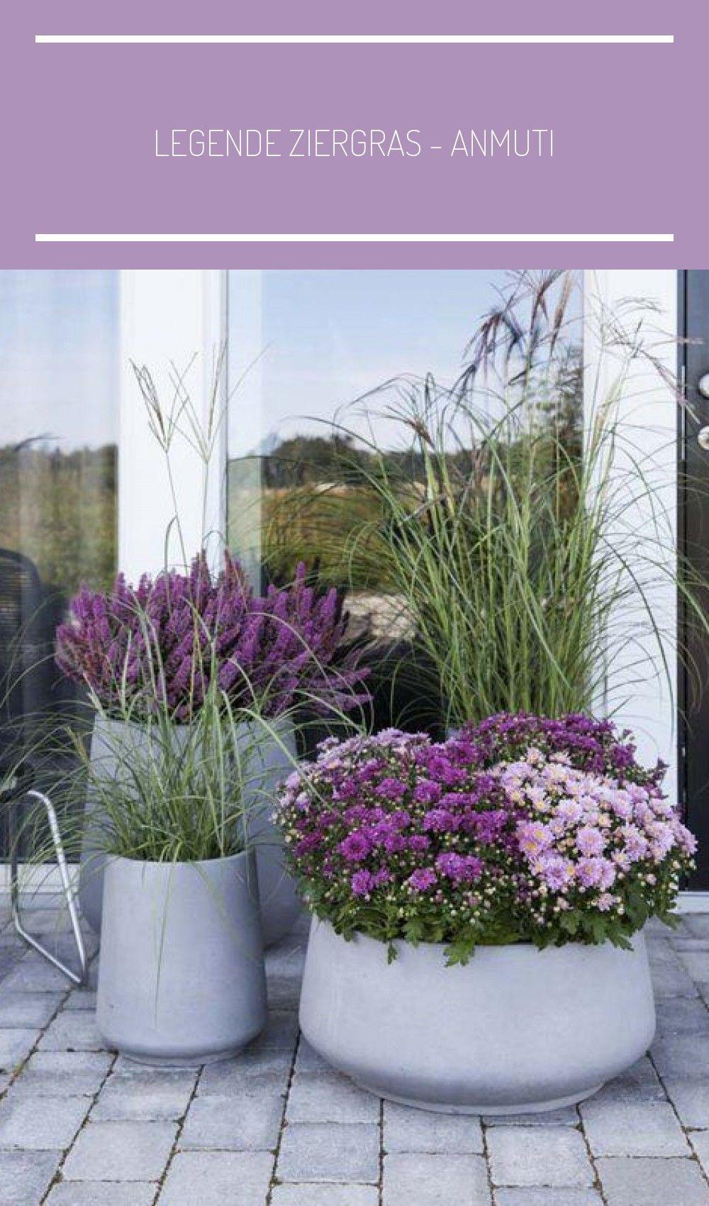 Legende Ziergras Anmutig Und Dekorativ Dekorativ Anmutig Und Porche In 2020 Vegetable Garden Design Rooftop Garden Garden