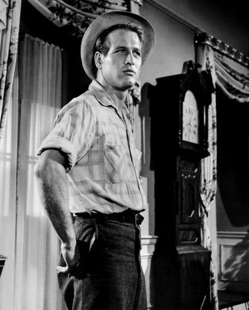 fb644c8c The Long Hot Summer (1958) was my first Paul Newman film | Paul ...
