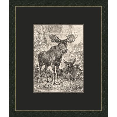 Melissa Van Hise Forest Dwellers I Framed Graphic Art