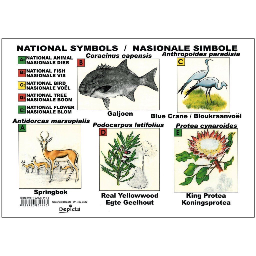 South African Symbols Suid Afrika Simbole Perfect For