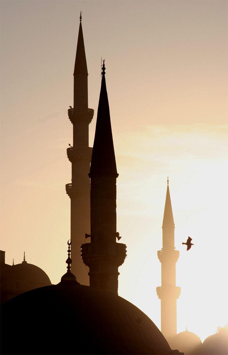 peaceful zspin istanbul turkey arabian nights