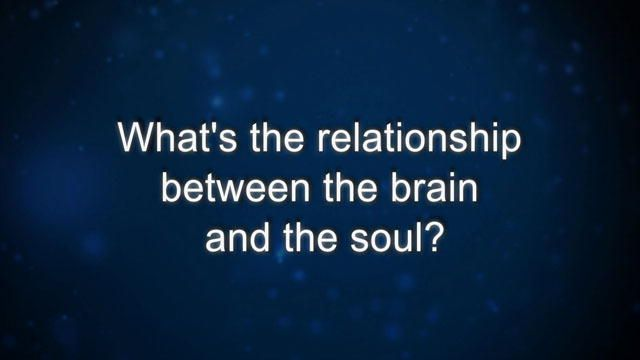 Curiosity: R. Tanzi: What's the relationship between the brain and the soul? : Video : Discovery Channel