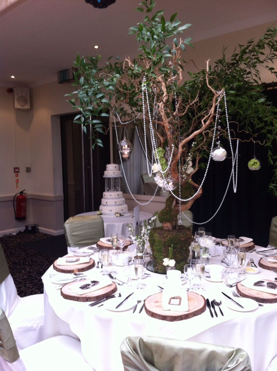 Small tree centre pieces looks fantastic with pearls and flowers