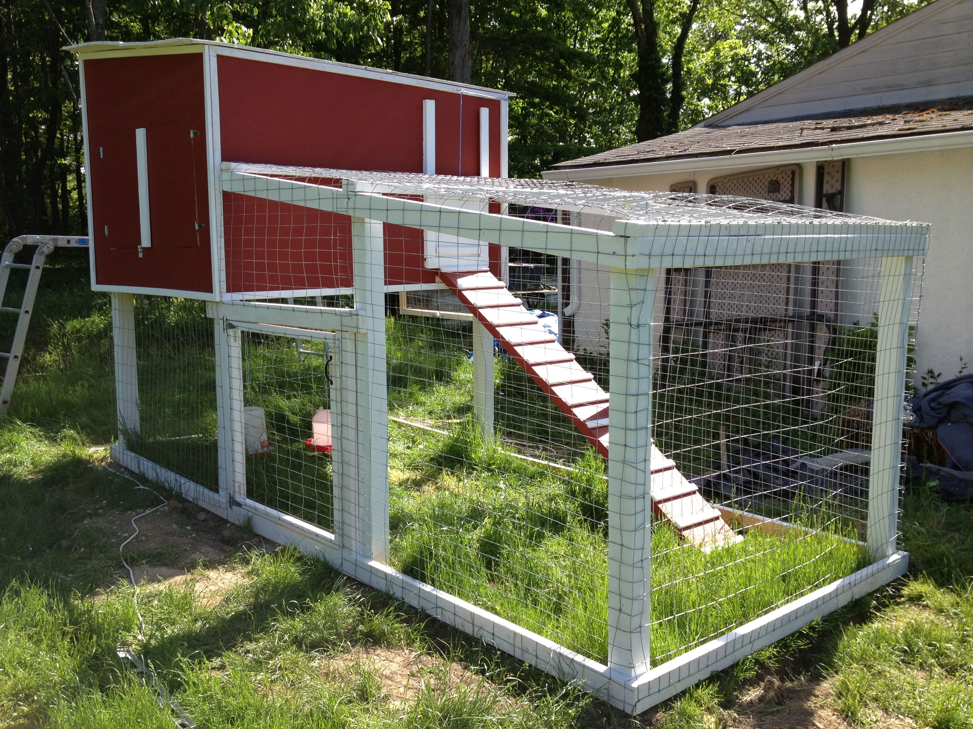 diy backyard chicken coop backyard chickens pinterest