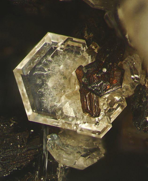 Catapleiite : Na2ZrSi3O9·2H2O Poudrette quarry, Mont Saint-Hilaire, La Vallée-du-Richelieu RCM, Montérégie, Québec, Canada. Fov 2.4 x 2.8 mm. MOB collection