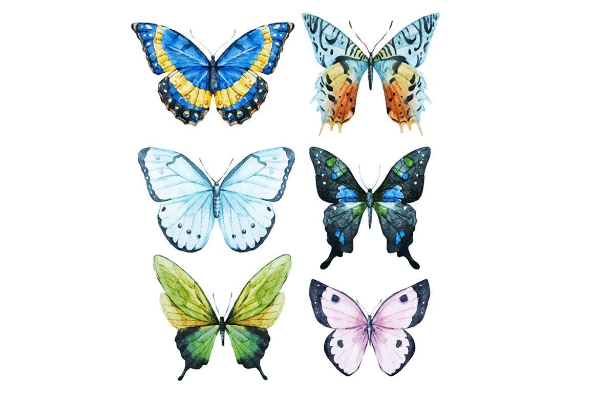 Watercolor Butterflies Png Butterfly Watercolor Butterfly Illustration Butterflies Vector