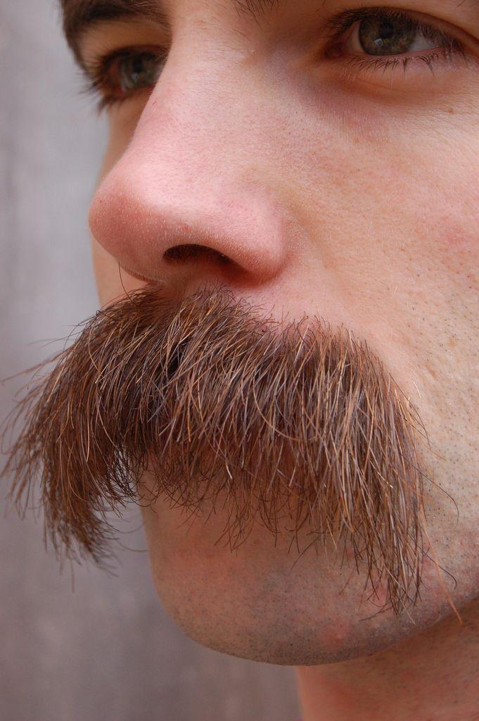 Bigbadbeards Stacheman76 Omg Hot Moustaches Men Beard No Mustache Walrus Mustache