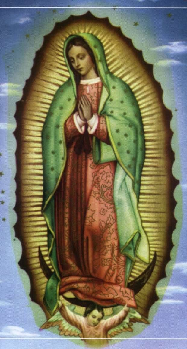 our lady of guadalupe tattoo ideas pinterest. Black Bedroom Furniture Sets. Home Design Ideas