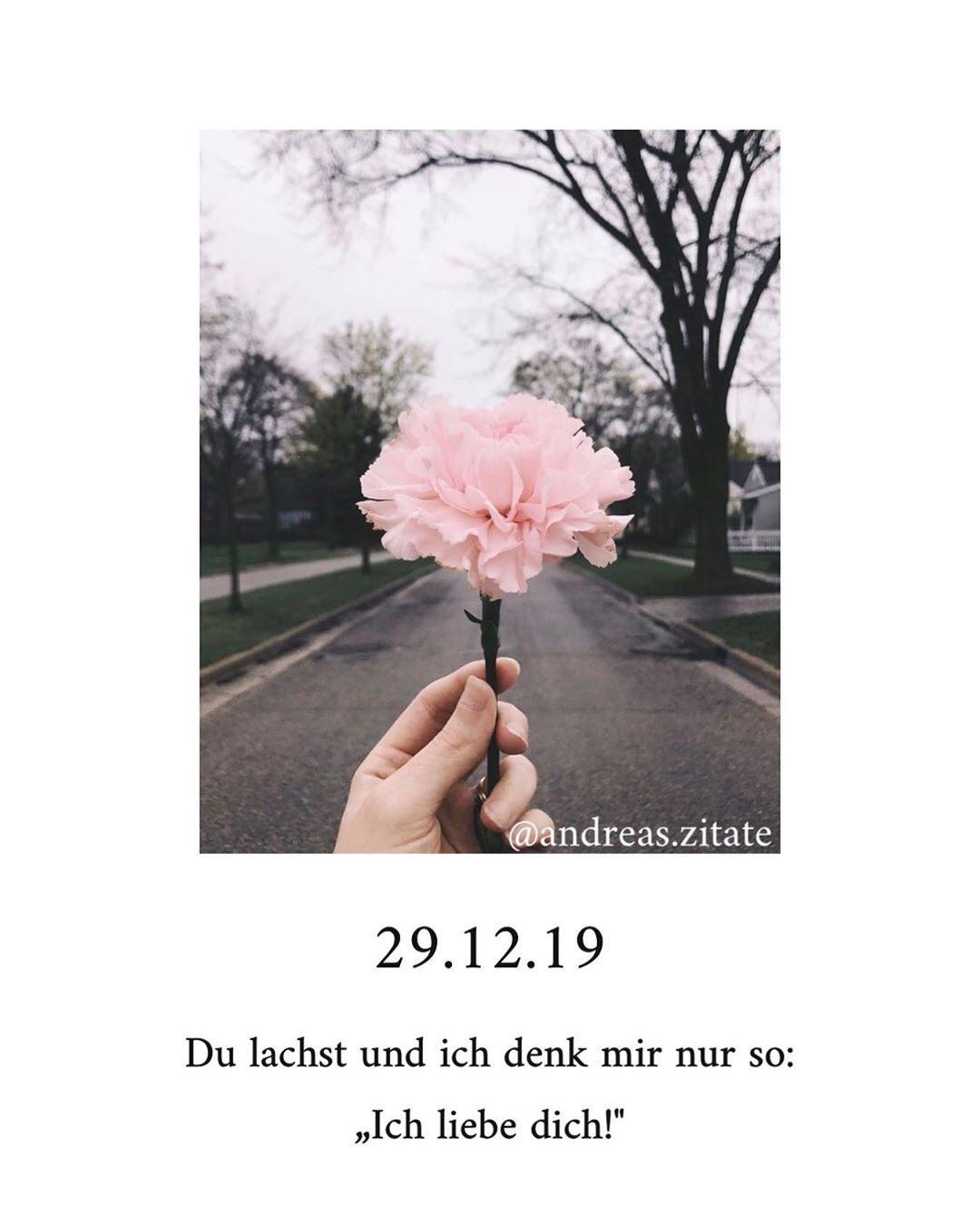ᐅ 99 Beliebte Sprüche & Zitate #sprüche #zitate ...
