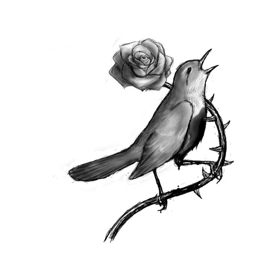 The Nightingale and the Rose by KarineXanaro | Death & Fairy Tales ...