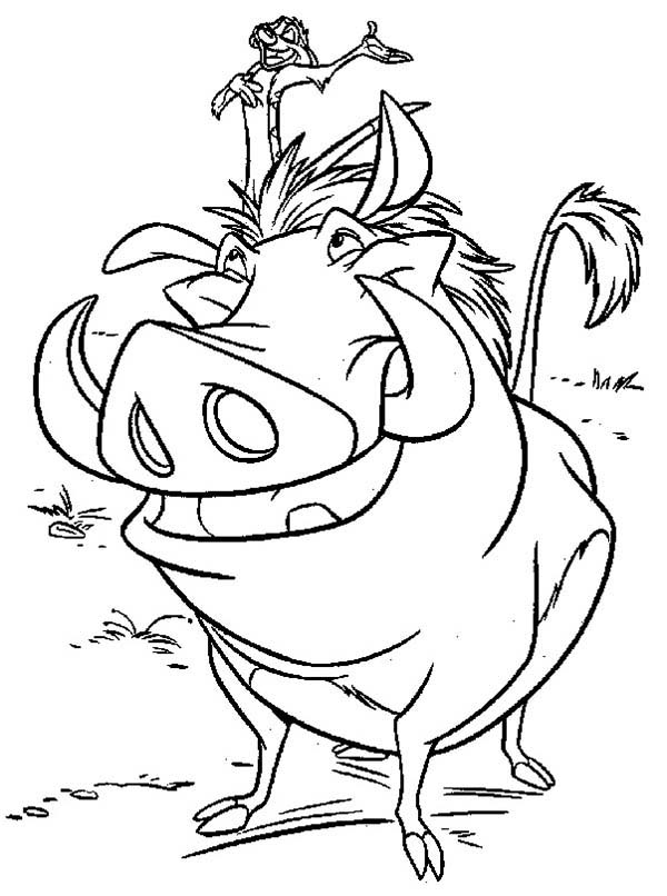 Timon And Pumbaa Is Best Friend Coloring Page Coloring Sun Coloring Pages Timon And Pumbaa Coloring Pictures