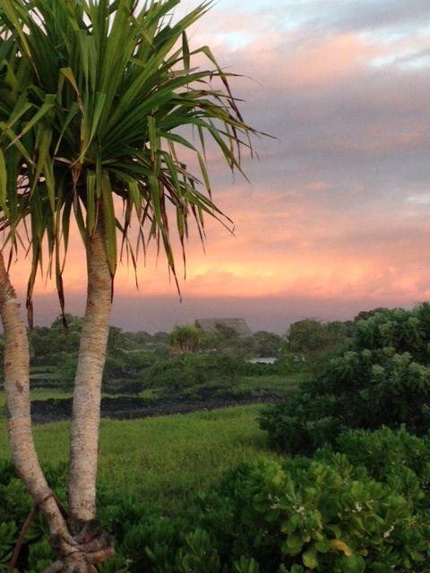 Hawai'i No Ka Oi #bigisland #hawaii #abbeyvacationrentals
