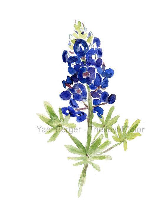 Art Print Bluebonnet Blue Bonnet Watercolor Print Wild Flower