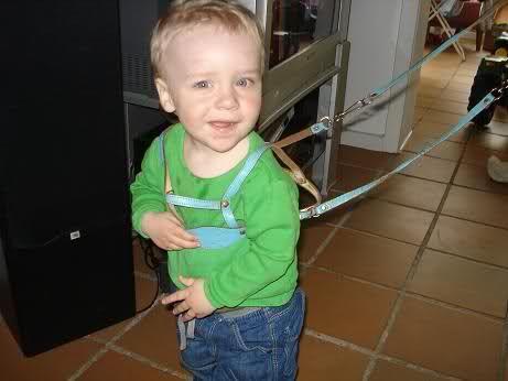 """""""Wufwuf eller hvad mor?"""" #child #harness #reins #harnesskids @HarnessKids"""