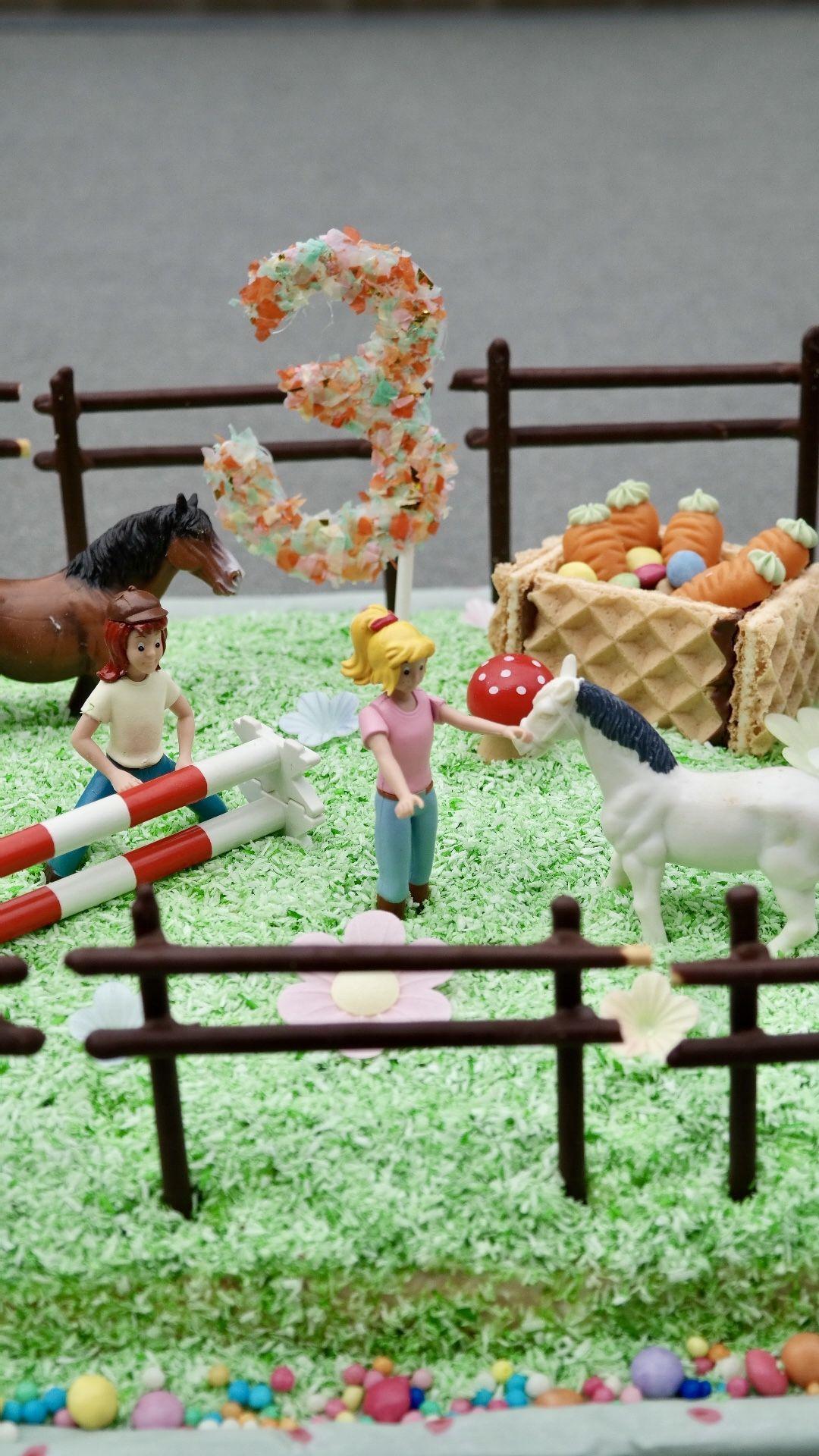 Bibi Und Tina Torte Zum Kindergeburtstag In 2020 Bibi Und Tina Torte Kindergeburtstag Pferde Kuchen Kindergeburtstag Pferd