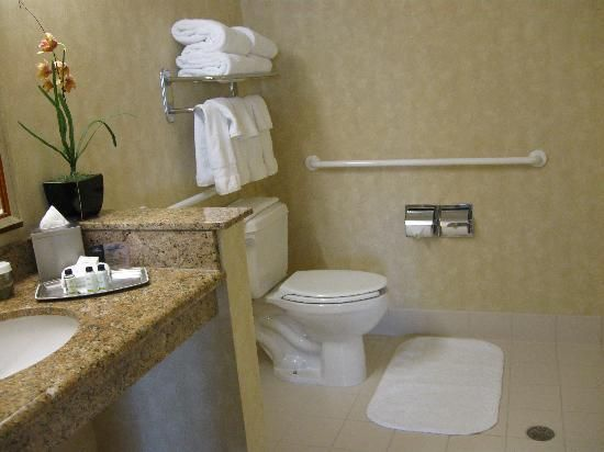 Amazing Small Bathroom Designs For People With Disabilities