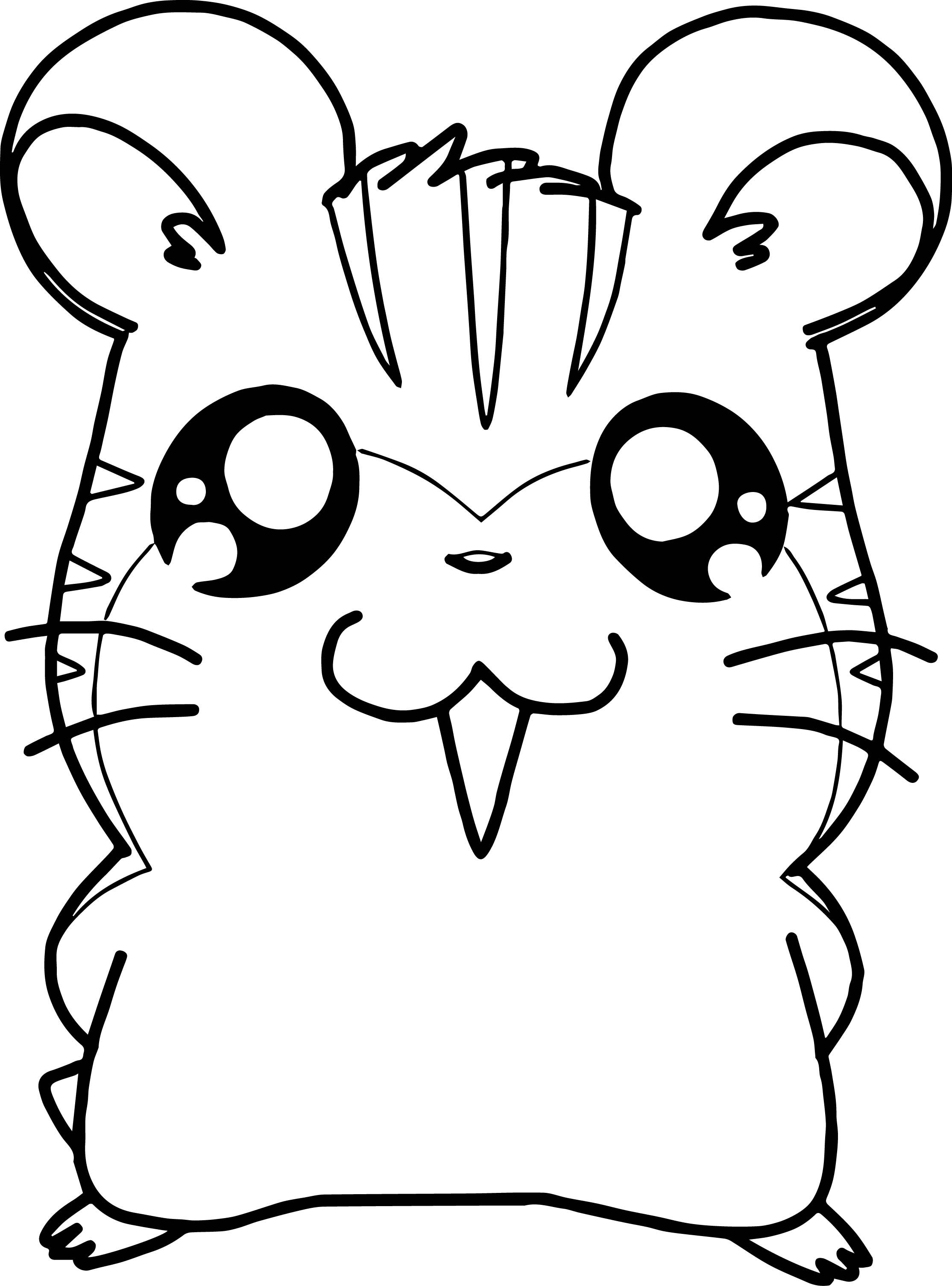 Awesome Hamtaro Sandy And Stan Anime Coloring Page Animal