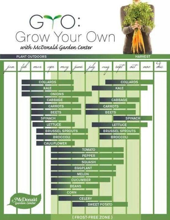 Vegetable Garden Planting Time Frames Handy Quick Reference