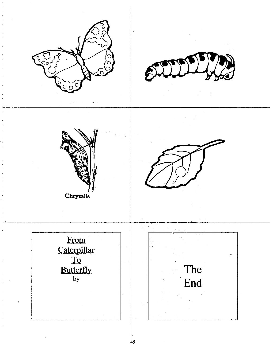 Children Can Create Their Own Caterpillar To Butterfly Books By Cutting Apart The Pictures And