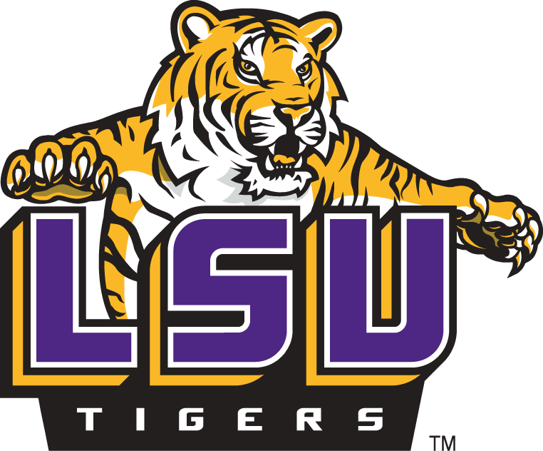 Image result for lsu images