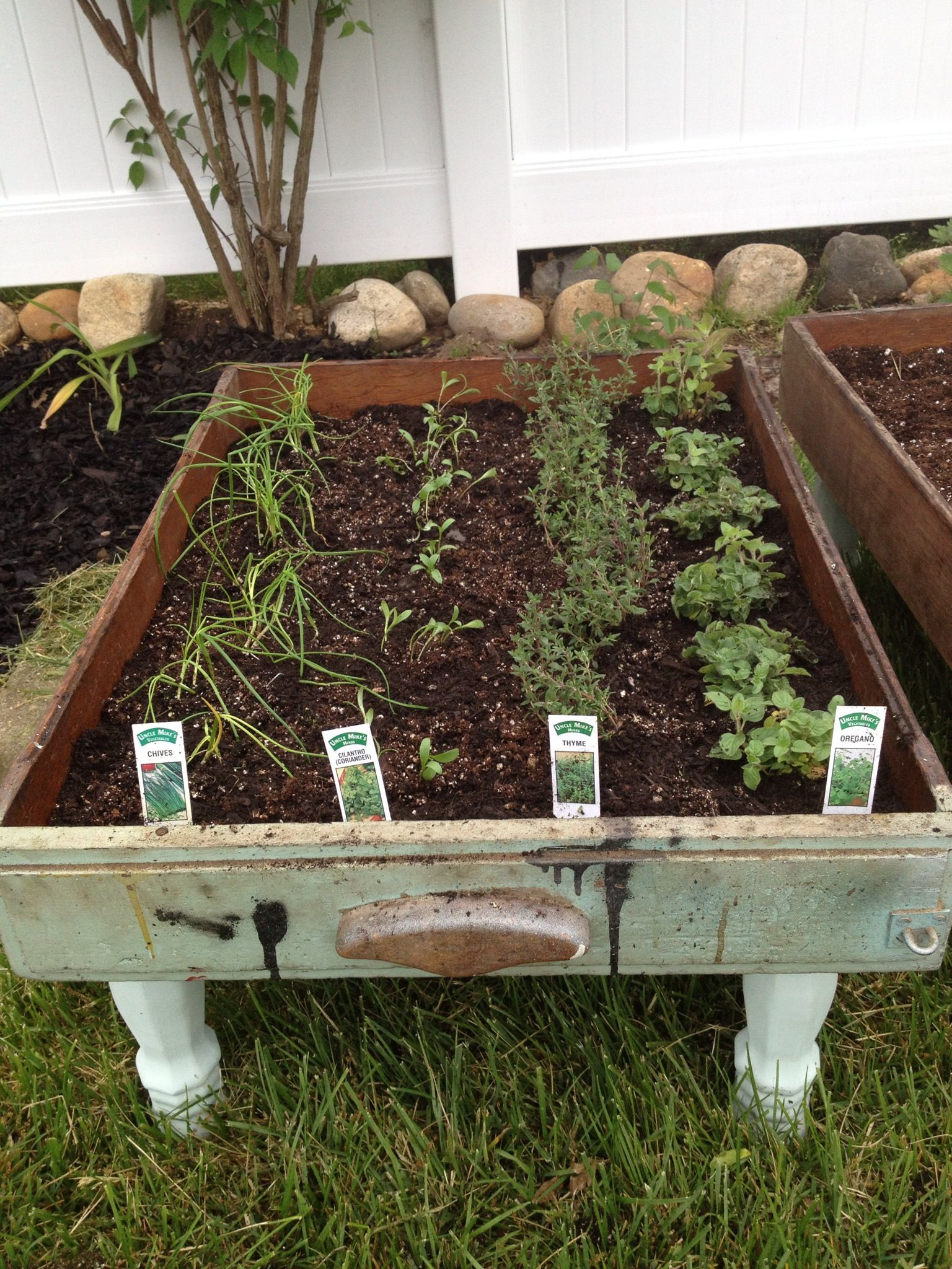 how to make your own herb garden recipe kids water play table