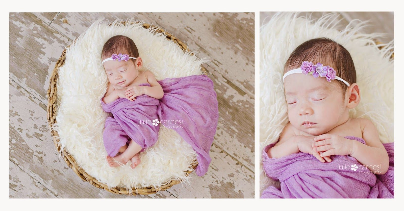 Julie Carnesi Photography | Newborn Girl Photography