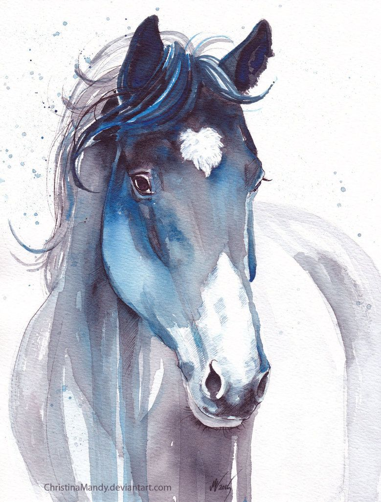 Watercolor On A4 Reference Www Pinterest Com Pin 33798114 Edit 21 Aug 2016 By The Way I Just F Watercolor Horse Painting Watercolor Horse Horse Painting