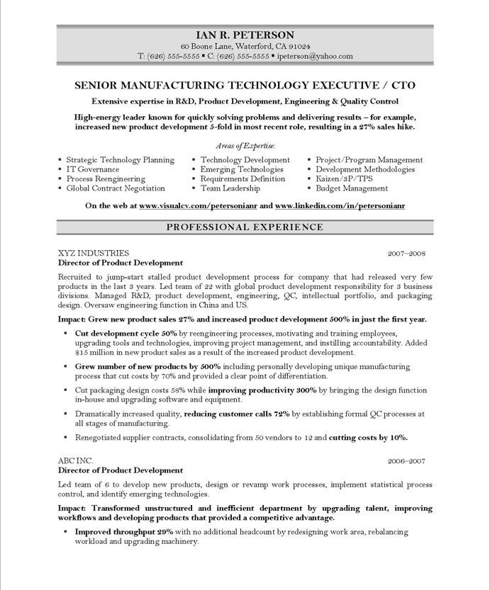 Chief Technology Officer Page1 Executive Resume Samples