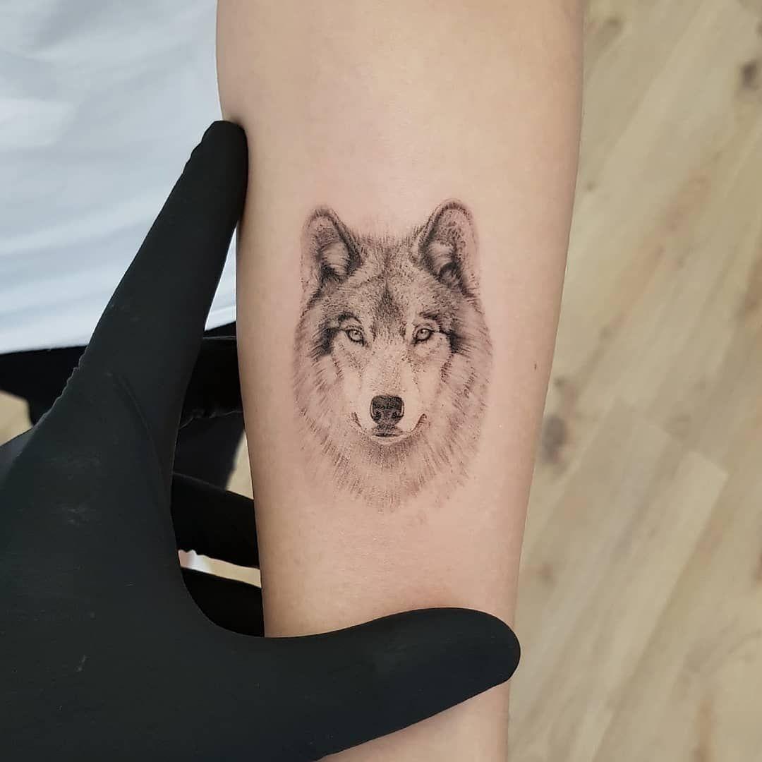 Wolf  True Canvas Thommesen Ink Realismus realistisches Tattoo Wolf Tattoo Wolf Fineline Tattoo Ei