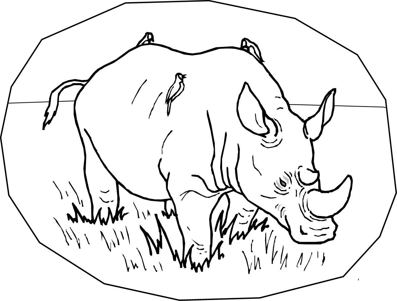 rhino coloring pages 19 rhinoceros coloring rhinoceros coloring 18 free coloring page