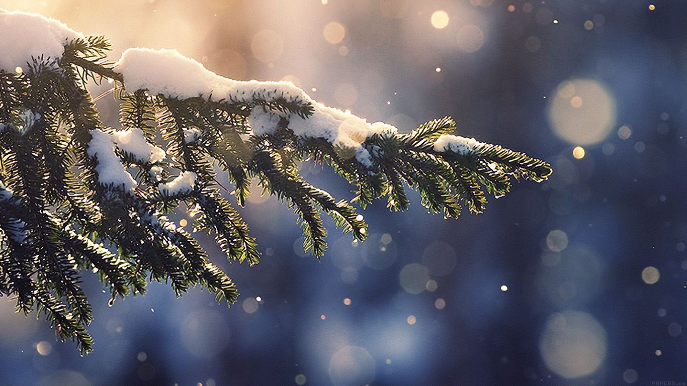 Desktop Wallpaper Laptop Mac Macbook Air Mk28 Snowing Tree Blue Christmas Winter Natur Wallpaper Iphone Christmas Iphone Wallpaper Winter Snow Wallpaper Iphone