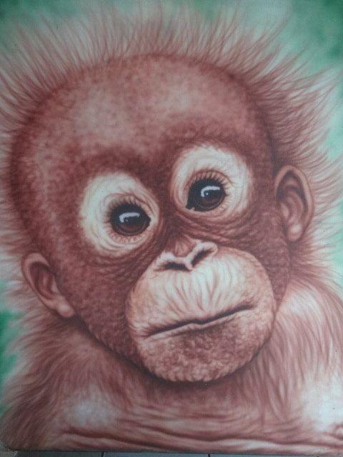 Swearing Chimpanzee Animal Canvas Art Cheap Wall Print Home Interior